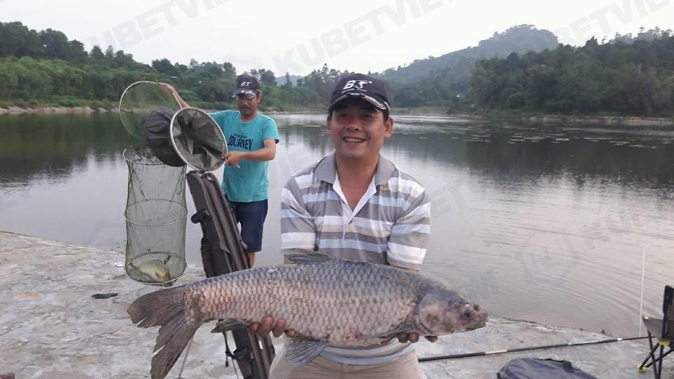 Mơ thấy bắt cá đánh con gì trúng lớn (Kubet.club)