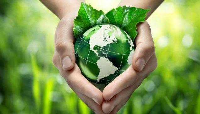 Thủ tục hồ sơ cấp phép bảo vệ môi trường bao gồm những gì?